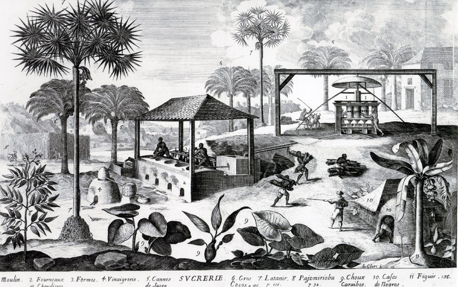 Sucrerie à Saint Domingue